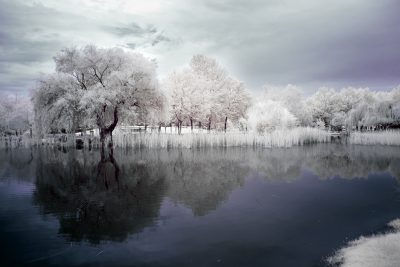 infrared shot of the botanical park in Bursa, Turkiye