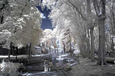 infrared shot of the Gulhane park in Istanbul in Turkiye