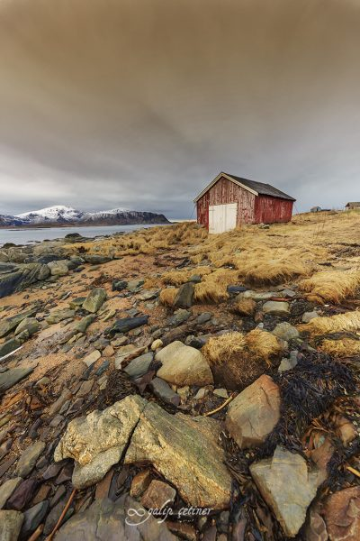 old red hut in lofoten, norway