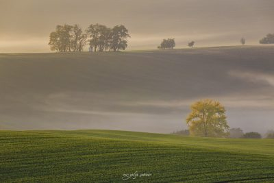 santa barbara chapel in autumn in moravia, checia
