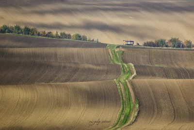 green way to hut in brown field in moravia, checia