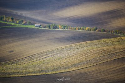 green lines and the hut in brown field in moravia, checia
