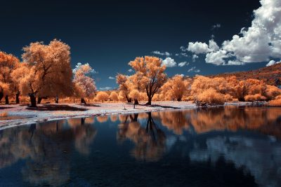 infrared shot of the floodplain