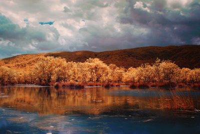 infrared shot of the Karacabey Floodplain in Bursa, Turkiye