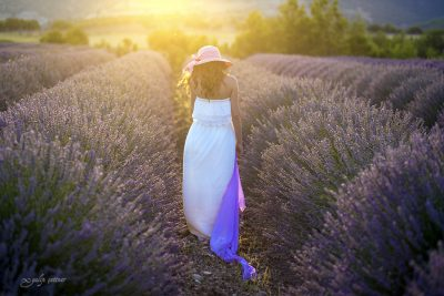 the beautiful girl with a hat is standing in the lavender field