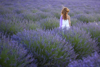 the beautiful girl is standing in the lavender field