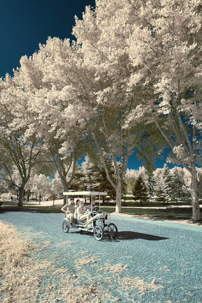 infrared shot of the bicycle in botanical park in bursa