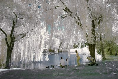 infrared shot of the people in botanical park in bursa
